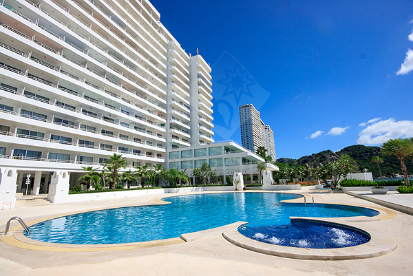 Beautiful Condo with Stunning Beach Front (20371)