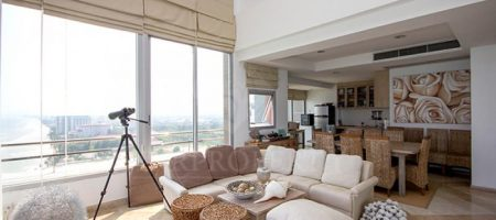 Luxurious Penthouse Unit For Rent (40390)