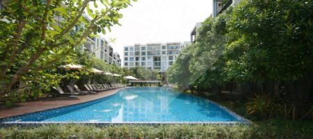 1 Bedroom Beach Front Condo for Rent (40310)